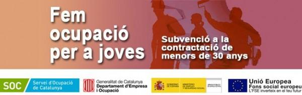 Fem Ocupació Per A Joves:Subvenció A La Contractació 2015-16